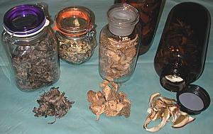 pilzkonservierung trocknen und einfrieren von pilzen. Black Bedroom Furniture Sets. Home Design Ideas